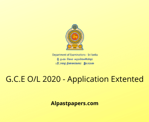 ol exam 2020 department of examination